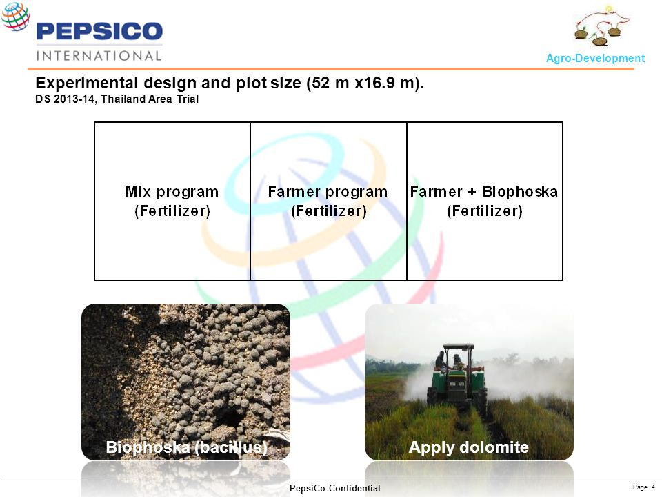 Page 4 PepsiCo Confidential Agro-Development Experimental design and plot size (52 m x16.9 m). DS 2013-14, Thailand Area Trial Biophoska (bacillus) Ap