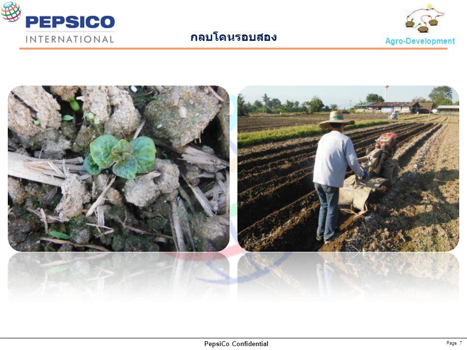 Page 8 PepsiCo Confidential Agro-Development Growing stage 31 DAP54 DAP 70 DAP98 DAP