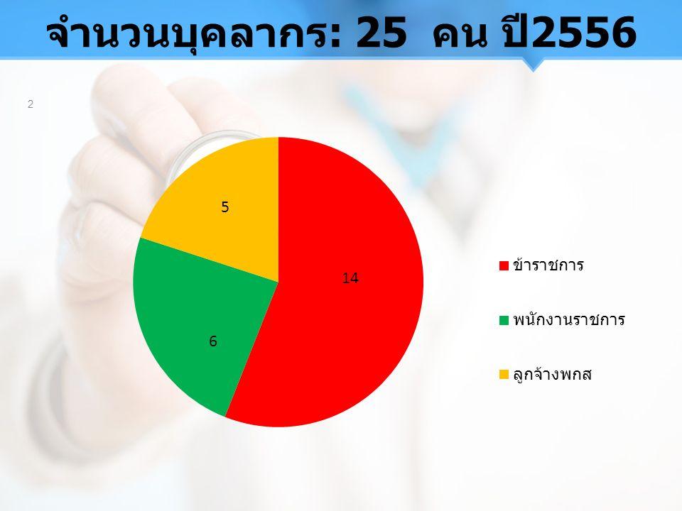 จำนวนบุคลากร: 25 คน ปี2556 2