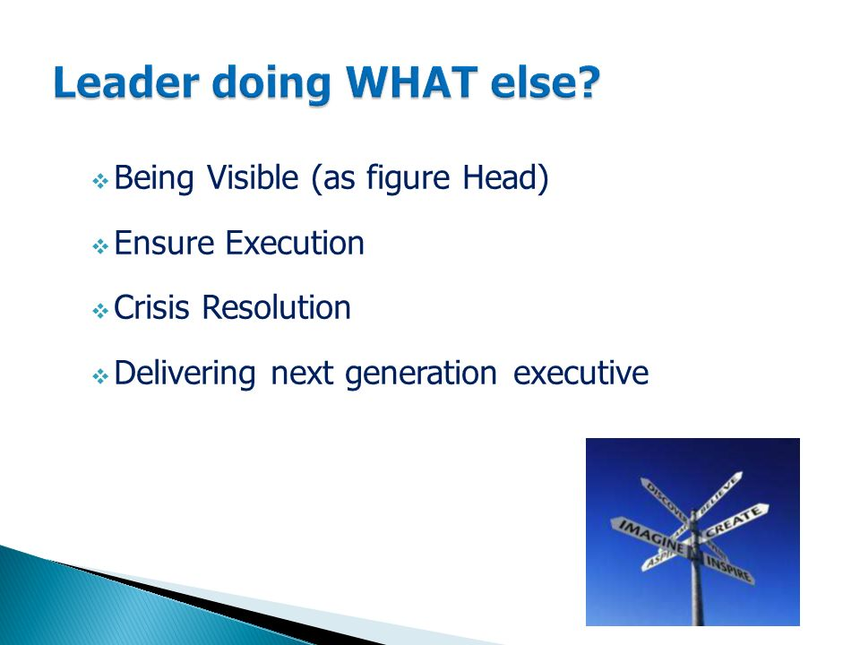  Being Visible (as figure Head)  Ensure Execution  Crisis Resolution  Delivering next generation executive