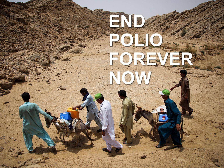 3,145 เสียชีวิต 21,269 ทุพพล ภาพ 3,145 เสียชีวิต 21,269 ทุพพล ภาพ END POLIO FOREVER NOW