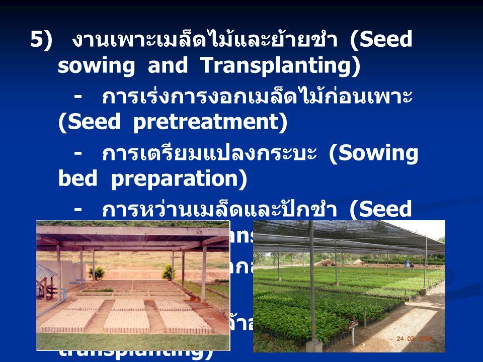 5) งานเพาะเมล็ดไม้และย้ายชำ (Seed sowing and Transplanting) - การเร่งการงอกเมล็ดไม้ก่อนเพาะ (Seed pretreatment) - การเตรียมแปลงกระบะ (Sowing bed preparation) - การหว่านเมล็ดและปักชำ (Seed sowing and Transplanting) - การดูแลรักษากล้าอ่อน (Seedling maintenance) - การย้ายชำกล้าอ่อน (Seedling transplanting)