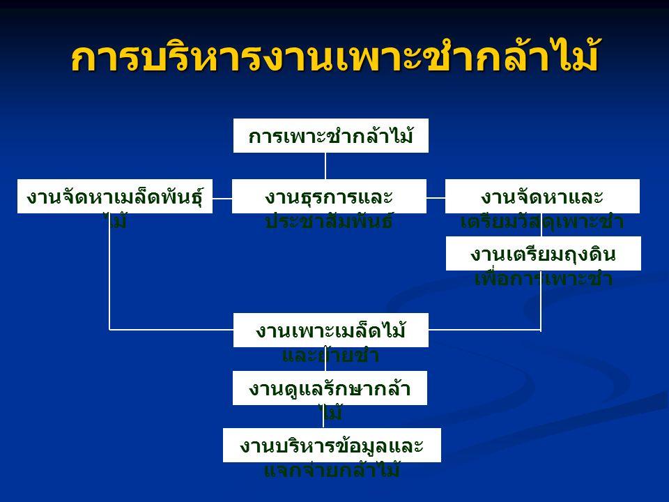 การบริหารงาน การเพาะชำกล้าไม้ (The Administration of Large- scale Tree Nursery Center) 1) งานธุรการและประชาสัมพันธ์ (Administration And Information) - สารบัญ (Registering) - การธุรการและการเงิน (Administration And Accounting) - การประสานงาน (Co-operation) - การประชาสัมพันธ์ (Information) - การพัสดุครุภัณฑ์ (Materials) - การเก็บรวบรวมข้อมูลสถิติจัดส่งรายงาน การเพาะชำ (Data collection)