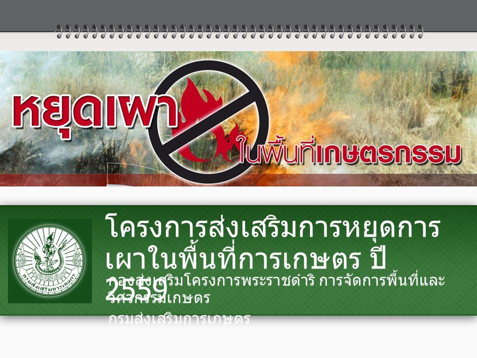 โครงการส่งเสริมการหยุดการ เผาในพื้นที่การเกษตร ปี 2559 กองส่งเสริมโครงการพระราชดำริ การจัดการพื้นที่และ วิศวกรรมเกษตร กรมส่งเสริมการเกษตร