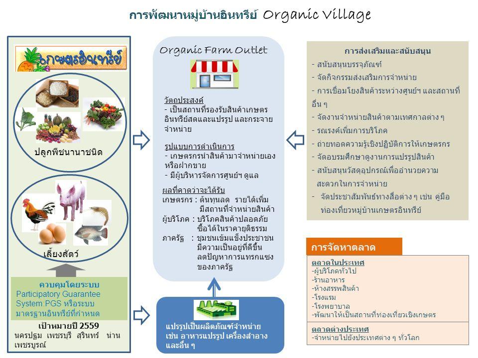 การพัฒนาหมู่บ้านอินทรีย์ Organic Village ปลูกพืชนานาชนิด เลี้ยงสัตว์ ควบคุมโดยระบบ Participatory Guarantee System:PGS หรือระบบ มาตรฐานอินทรีย์ที่กำหนด แปรรูปเป็นผลิตภัณฑ์จำหน่าย เช่น อาหารแปรรูป เครื่องสำอาง และอื่น ๆ Organic Farm Outlet วัตถุประสงค์ - เป็นสถานที่รองรับสินค้าเกษตร อินทรีย์สดและแปรรูป และกระจาย จำหน่าย รูปแบบการดำเนินการ - เกษตรกรนำสินค้ามาจำหน่ายเอง หรือฝากขาย - มีผู้บริหารจัดการศูนย์ฯ ดูแล ตลาดในประเทศ -ผู้บริโภคทั่วไป -ร้านอาหาร -ห้างสรรพสินค้า -โรงแรม -โรงพยาบาล -พัฒนาให้เป็นสถานที่ท่องเที่ยวเชิงเกษตร การส่งเสริมและสนับสนุน - สนับสนุนบรรจุภัณฑ์ - จัดกิจกรรมส่งเสริมการจำหน่าย - การเชื่อมโยงสินค้าระหว่างศูนย์ฯ และสถานที่ อื่น ๆ - จัดงานจำหน่ายสินค้าตามเทศกาลต่าง ๆ - รณรงค์เพิ่มการบริโภค - ถ่ายทอดความรู้เชิงปฏิบัติการให้เกษตรกร - จัดอบรมศึกษาดูงานการแปรรูปสินค้า - สนับสนุนวัสดุอุปกรณ์เพื่ออำนวยความ สะดวกในการจำหน่าย -จัดประชาสัมพันธ์ทางสื่อต่าง ๆ เช่น คู่มือ ท่องเที่ยวหมู่บ้านเกษตรอินทรีย์ ผลที่คาดว่าจะได้รับ เกษตรกร : ต้นทุนลด รายได้เพิ่ม มีสถานที่จำหน่ายสินค้า ผู้บริโภค : บริโภคสินค้าปลอดภัย ซื้อได้ในราคายุติธรรม ภาครัฐ : ชุมชนเข้มแข็งประชาชน มีความเป็นอยู่ที่ดีขึ้น ลดปัญหาการแทรกแซง ของภาครัฐ เป้าหมายปี 2559 นครปฐม เพชรบุรี สุรินทร์ น่าน เพชรบูรณ์ ตลาดต่างประเทศ -จำหน่ายไปยังประเทศต่าง ๆ ทั่วโลก การจัดหาตลาด