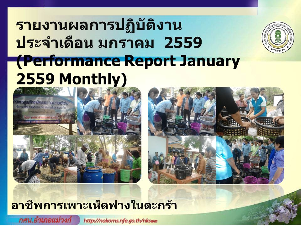 รายงานผลการปฏิบัติงาน ประจำเดือน มกราคม 2559 (Performance Report January 2559 Monthly) อาชีพการเพาะเห็ดฟางในตะกร้า
