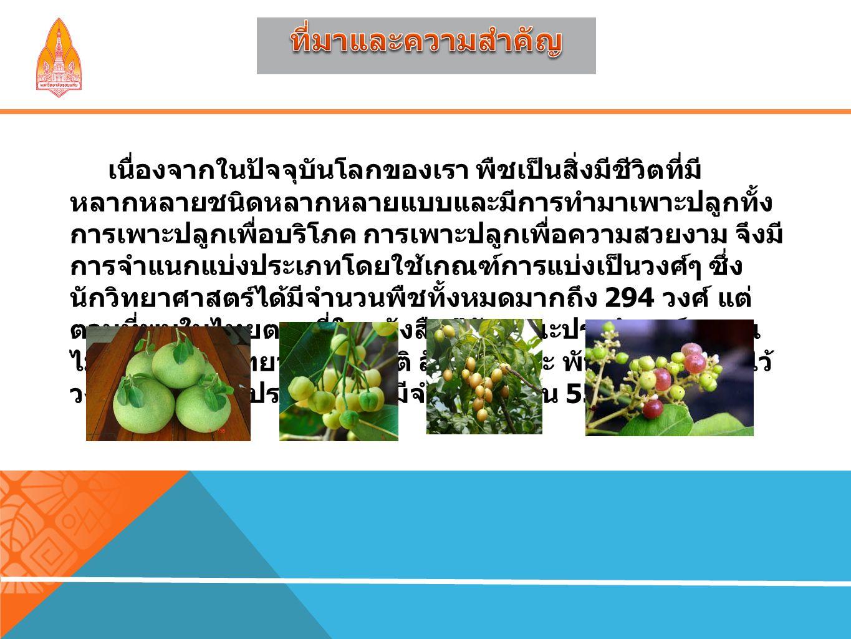 1.ผู้ใช้โปรแกรมรู้ถึงประโยชน์ของพืชชนิดต่างๆ 2.