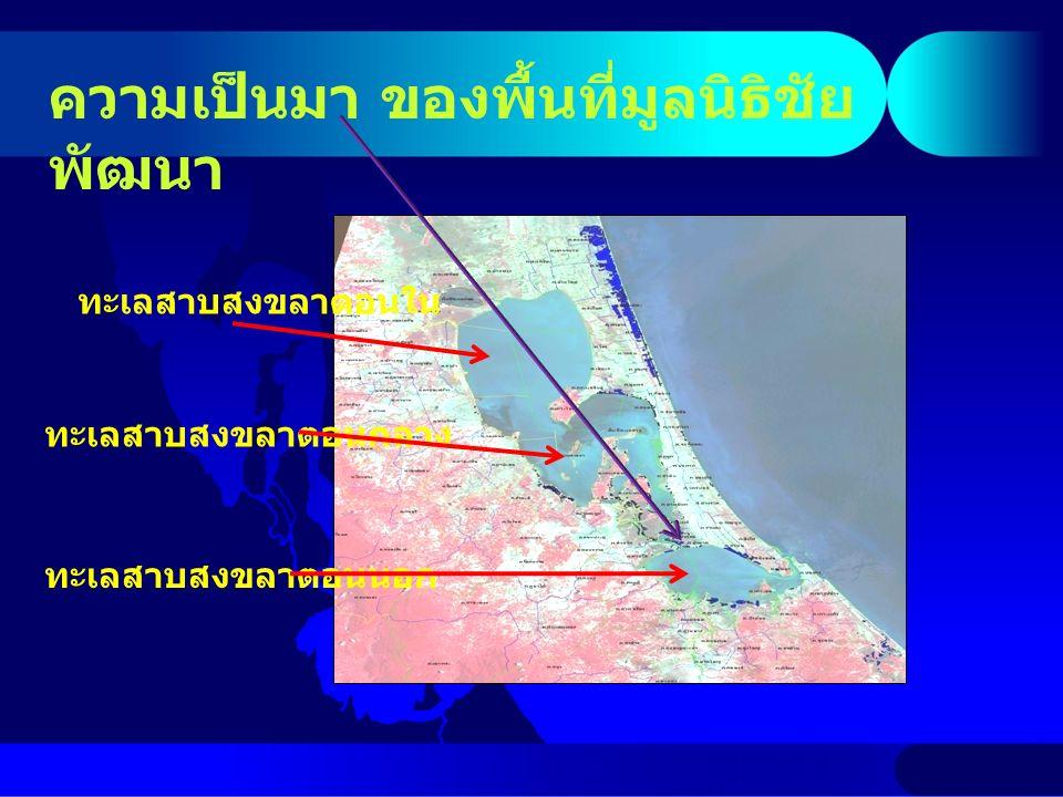 ผลการศึกษา : คุณภาพน้ำ ความ เค็ม ppt คูในคูนอกทะเลสา บ 25512-14 3-17 25520-212-210-30 อุณหภูมิ o C คูในคูนอกทะเลสา บ 255126.85-30.7826.33-30.8726.22-30.75 255226.90-30.6026.86-30.9726.35-30.22