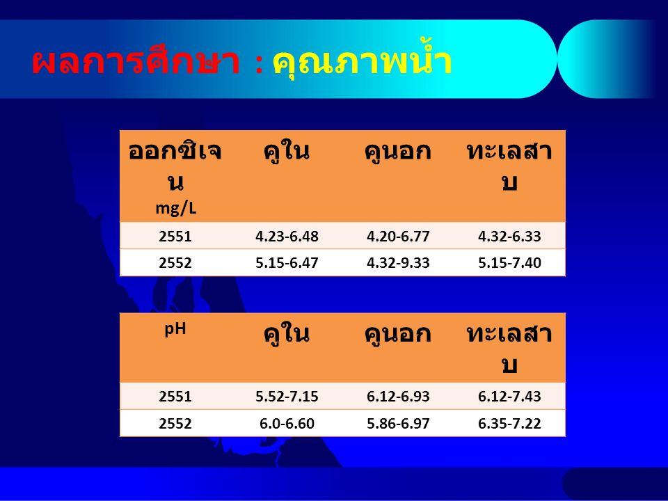 ผลการศึกษา : คุณภาพน้ำ pH คูในคูนอกทะเลสา บ 25515.52-7.156.12-6.936.12-7.43 25526.0-6.605.86-6.976.35-7.22 ออกซิเจ น mg/L คูในคูนอกทะเลสา บ 25514.23-6.484.20-6.774.32-6.33 25525.15-6.474.32-9.335.15-7.40