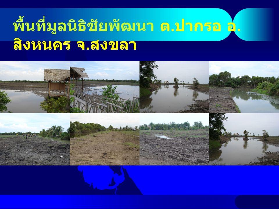 สรุปการศึกษา ปีที่ศึกษา บริเวณโครงการและทะเลสาบ น้ำมีความเค็มต่ำเกือบทั้งปี สัตว์น้ำในโครงการที่พบ ส่วนมากเป็นสัตว์น้ำจืด สำหรับแพลงก์ตอนพืชพบ Chlorella ทุกสถานี และแพลงก์ตอนสัตว์พบโคพีพอดทุกสถานี ส่วนสัตว์หน้าดินพบแอมฟิพอดเป็นประชากรกลุ่มเด่น และพบความชุกชุมสัตว์หน้าดินมากขึ้นตามจำนวนพันธุ์ไม้ป่าชายเลนที่ปลูกในโครงการ