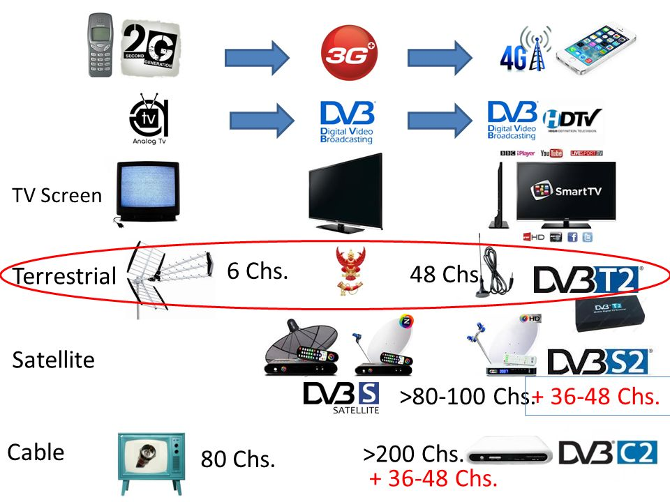 Terrestrial Satellite Cable TV Screen 6 Chs. 48 Chs. >80-100 Chs. 80 Chs. >200 Chs. + 36-48 Chs.