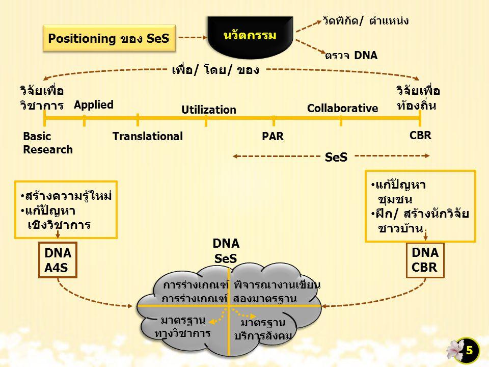 DNA SeS การร่างเกณฑ์ พิจารณางานเขียน การร่างเกณฑ์ สองมาตรฐาน มาตรฐาน ทางวิชาการ มาตรฐาน บริการสังคม DNA A4S DNA CBR สร้างความรู้ใหม่ แก้ปัญหา เชิงวิชา