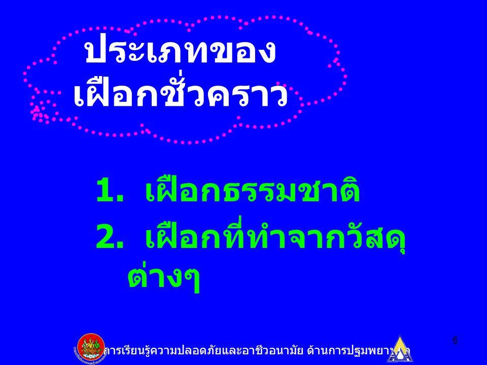 6 ประเภทของ เฝือกชั่วคราว 1. เฝือกธรรมชาติ 2.