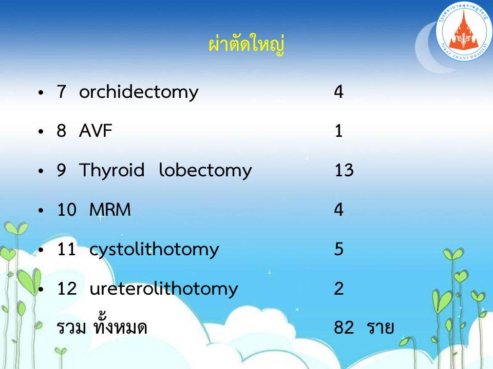 7 orchidectomy4 8 AVF1 9 Thyroid lobectomy13 10 MRM4 11 cystolithotomy5 12 ureterolithotomy 2 รวม ทั้งหมด82 ราย ผ่าตัดใหญ่