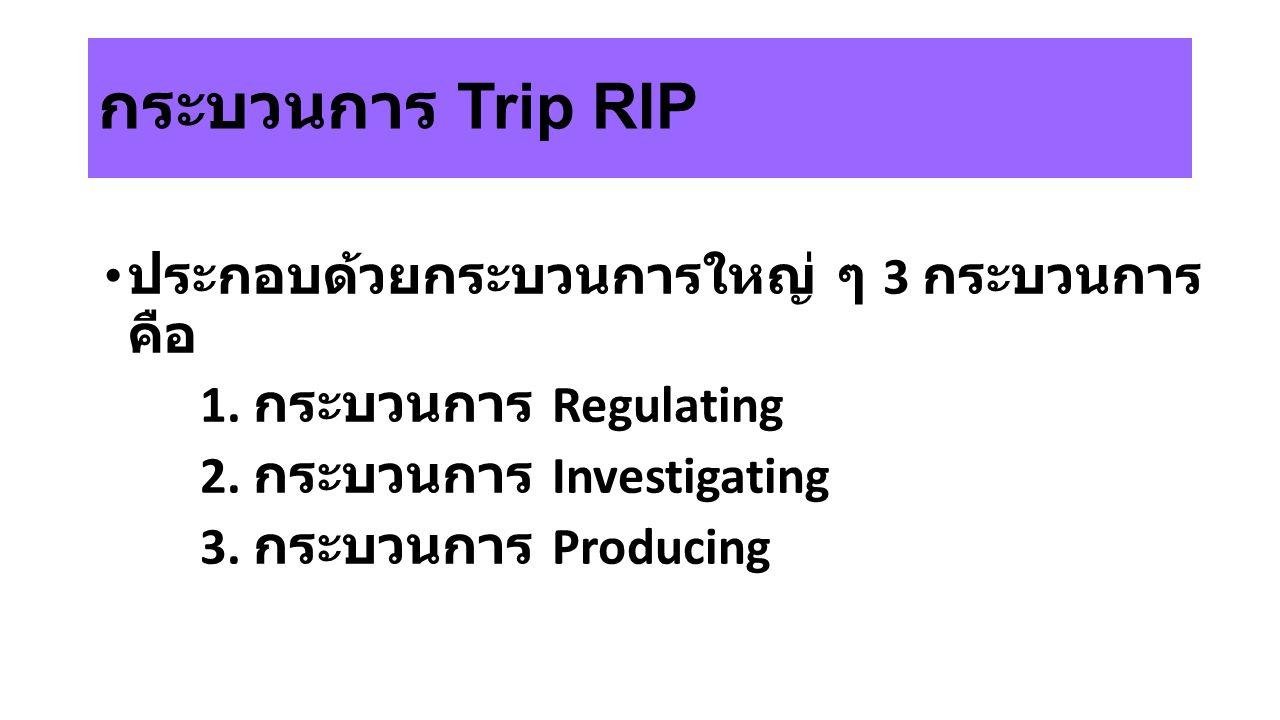 กระบวนการ Trip RIP ประกอบด้วยกระบวนการใหญ่ ๆ 3 กระบวนการ คือ 1. กระบวนการ Regulating 2. กระบวนการ Investigating 3. กระบวนการ Producing