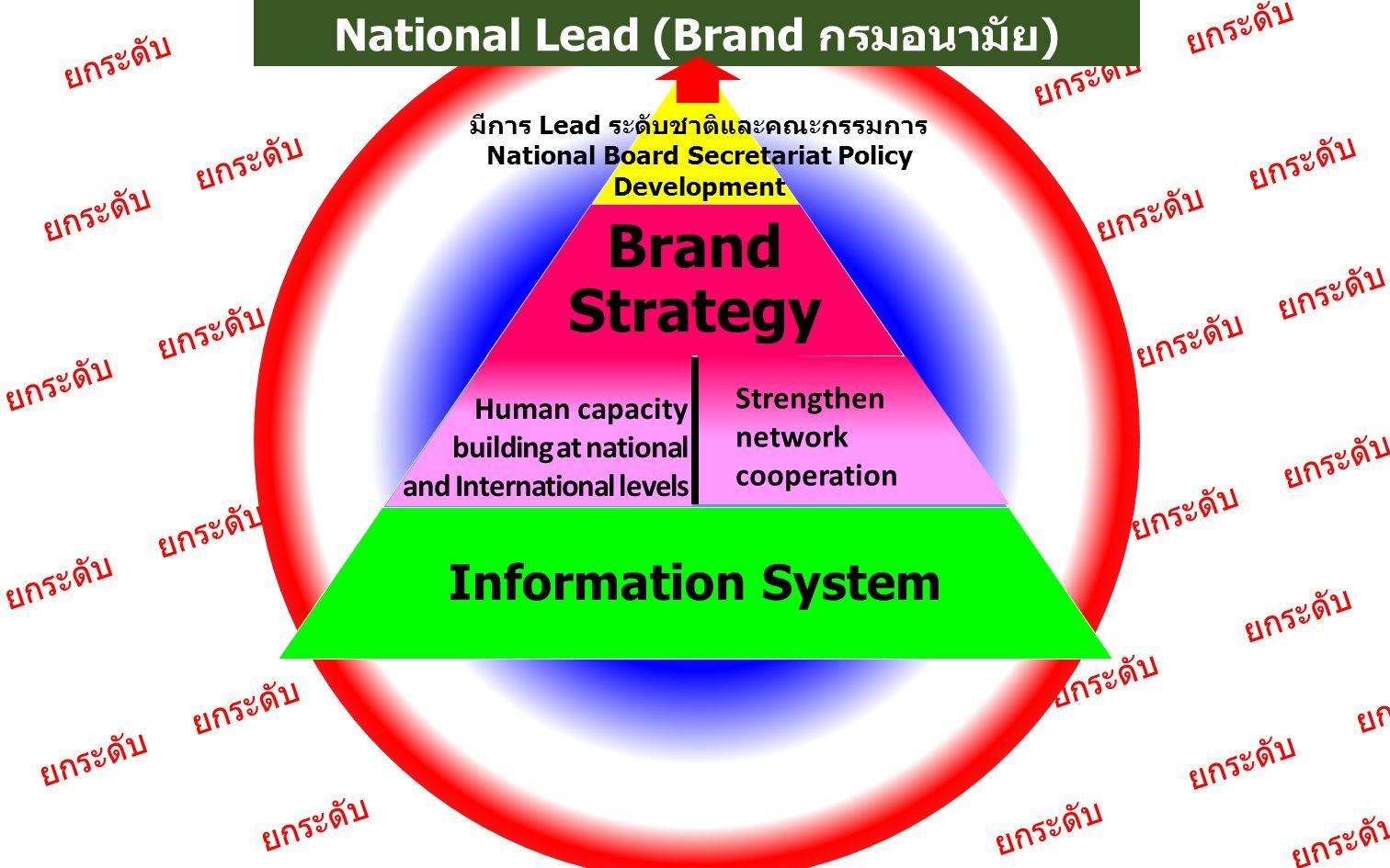 ยกระดับ Brand Strategy Information System Human capacity building at national and International levels Strengthen network cooperation มีการ Lead ระดับ