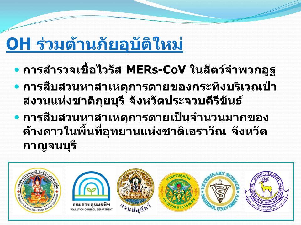 OH ร่วมต้านภัยอุบัติใหม่ การสำรวจเชื้อไวรัส MERs-CoV ในสัตว์จำพวกอูฐ การสืบสวนหาสาเหตุการตายของกระทิงบริเวณป่า สงวนแห่งชาติกุยบุรี จังหวัดประจวบคีรีขันธ์ การสืบสวนหาสาเหตุการตายเป็นจำนวนมากของ ค้างคาวในพื้นที่อุทยานแห่งชาติเอราวัณ จังหวัด กาญจนบุรี