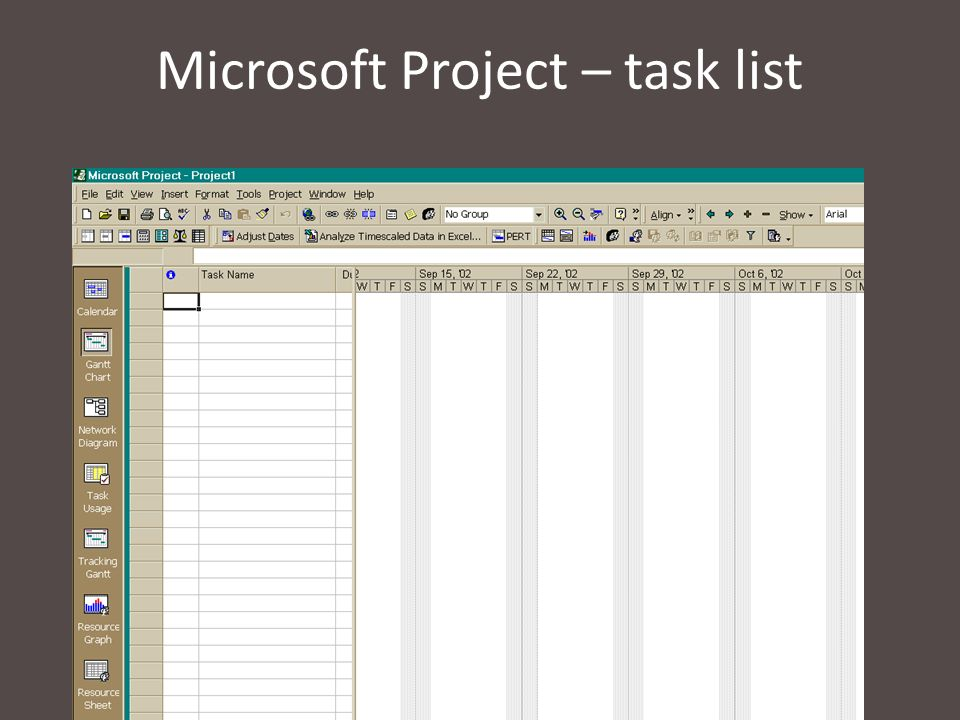 Microsoft Project – task list
