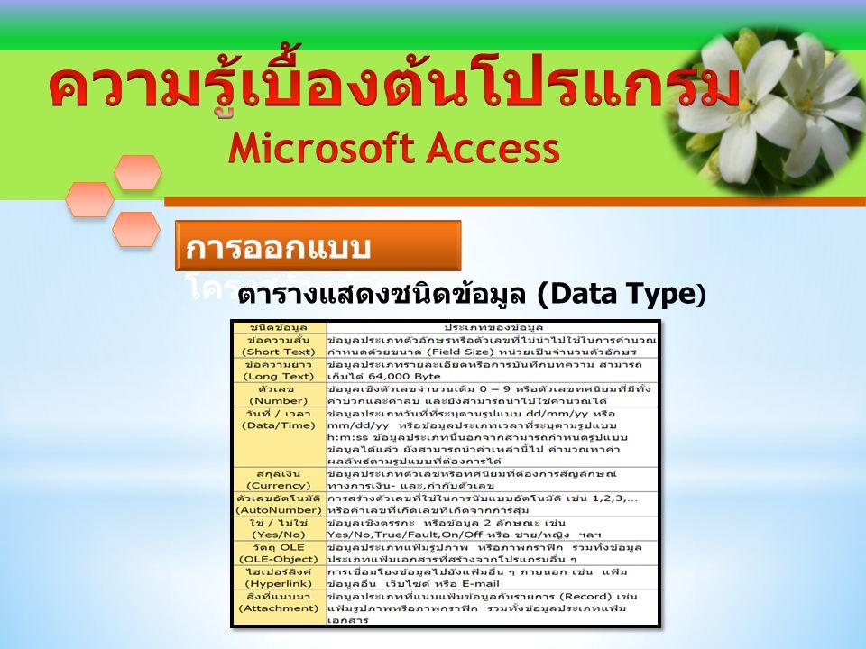 ตารางแสดงชนิดข้อมูล (Data Type )