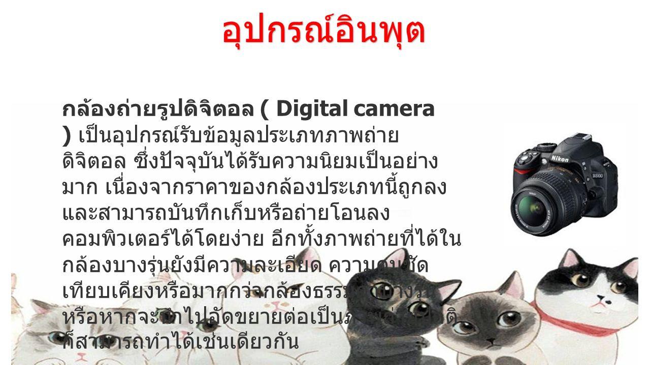 อุปกรณ์อินพุต กล้องถ่ายรูปดิจิตอล ( Digital camera ) เป็นอุปกรณ์รับข้อมูลประเภทภาพถ่าย ดิจิตอล ซึ่งปัจจุบันได้รับความนิยมเป็นอย่าง มาก เนื่องจากราคาขอ