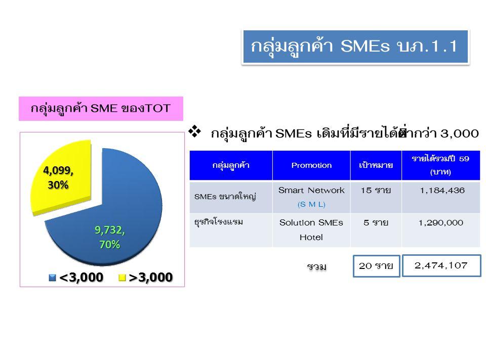 กลุ่มลูกค้า SMEs บภ.1.1 กลุ่มลูกค้า SME ของTOT  กลุ่มลูกค้า SMEs เดิมที่มีรายได้ต่ำกว่า 3,000 กลุ่มลูกค้าPromotionเป้าหมาย รายได้รวมปี 59 (บาท) SMEs ขนาดใหญ่ Smart Network (S M L) 15 ราย 1,184,436 ธุรกิจโรงแรม Solution SMEs Hotel 5 ราย1,290,000 รวม 20 ราย 2,474,107