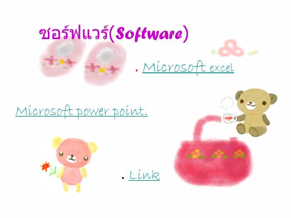 ซอร์ฟแวร์ ( Software ). Microsoft excel Microsoft excel Microsoft power point.. Link Link