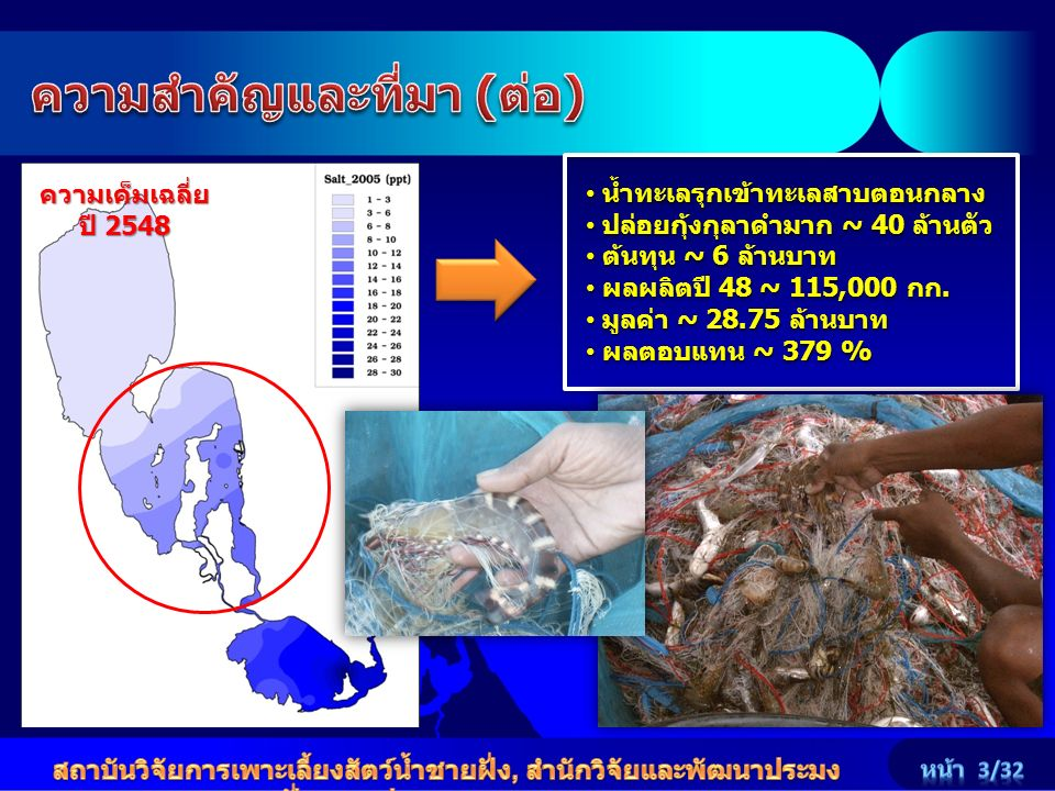 ความเค็มเฉลี่ย ปี 2548 น้ำทะเลรุกเข้าทะเลสาบตอนกลาง น้ำทะเลรุกเข้าทะเลสาบตอนกลาง ปล่อยกุ้งกุลาดำมาก ~ 40 ล้านตัว ปล่อยกุ้งกุลาดำมาก ~ 40 ล้านตัว ต้นทุ