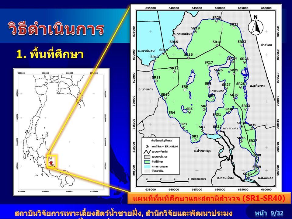 แผนที่พื้นที่ศึกษาและสถานีสำรวจ (SR1-SR40)