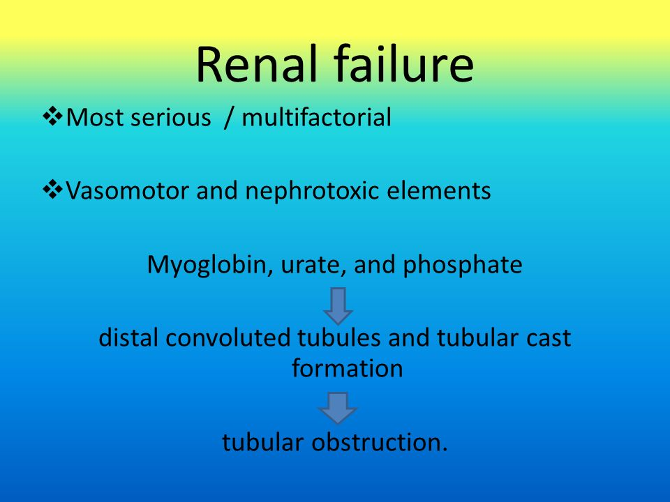 Renal failure  Most serious / multifactorial  Vasomotor and nephrotoxic elements Myoglobin, urate, and phosphate distal convoluted tubules and tubul