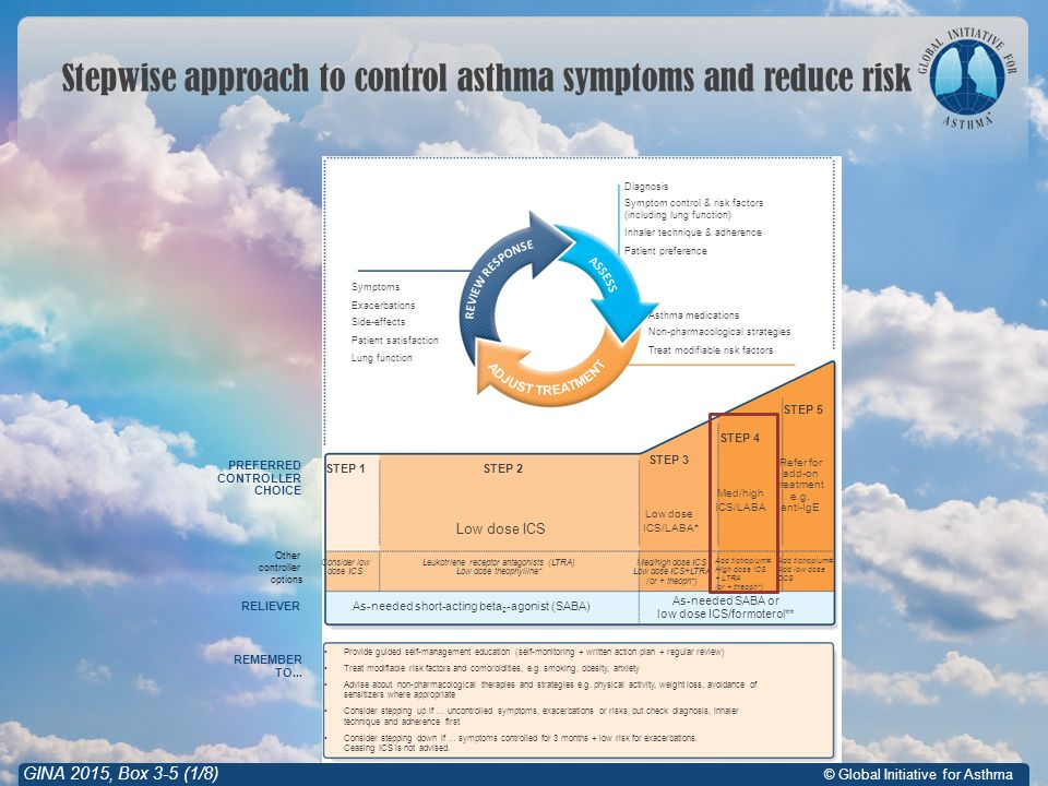 © Global Initiative for Asthma Stepwise approach to control asthma symptoms and reduce risk GINA 2015, Box 3-5 (1/8) Symptoms Exacerbations Side-effects Patient satisfaction Lung function Other controller options RELIEVER REMEMBER TO...