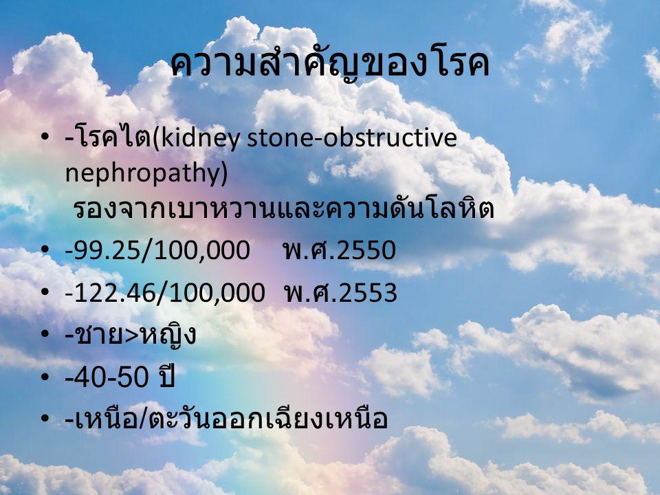 ความสำคัญของโรค - โรคไต (kidney stone-obstructive nephropathy) รองจากเบาหวานและความดันโลหิต -99.25/100,000 พ. ศ.2550 -122.46/100,000 พ. ศ.2553 - ชาย >