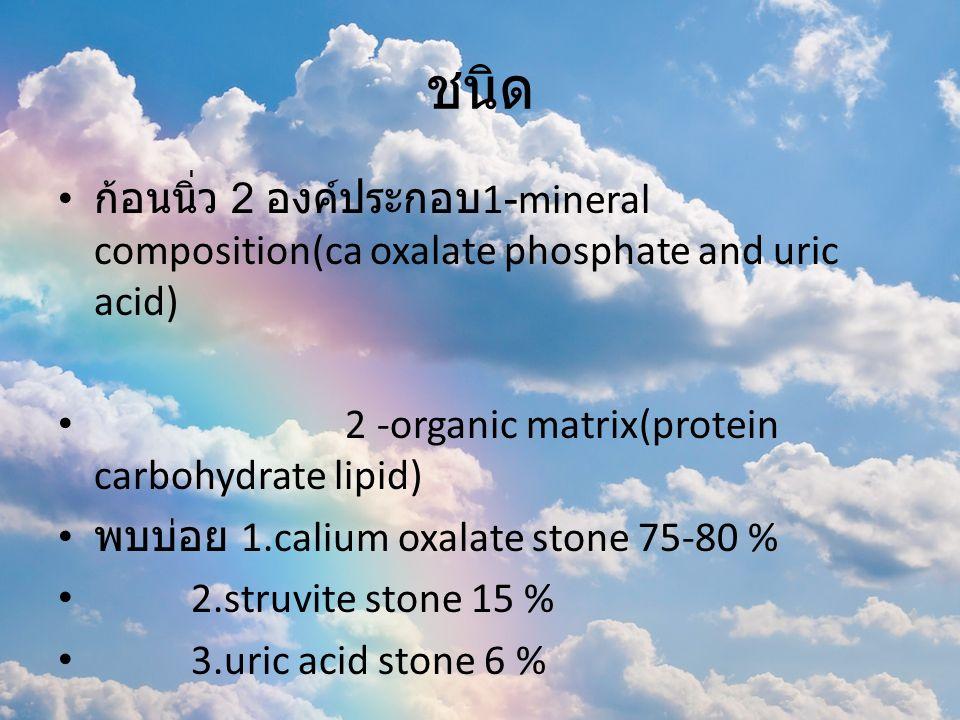 ปัจจัยเสี่ยง - สารก่อนิ่ว / สารยับยั้งนิ่ว (citrate potassium and magnesium) - ยาหรือเมตาบอไลต์ ขับออกทางไตสูง / ละลาย น้ำน้อย - นิ่วที่เกิดจากยาร้อยละ 1-2%.