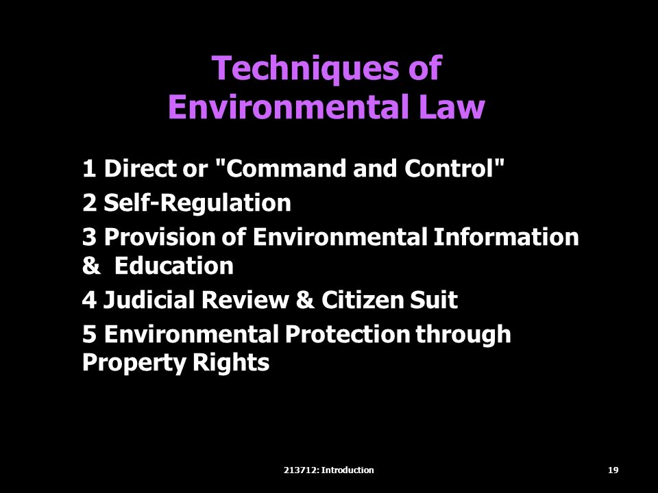 Techniques of Environmental Law 1 Direct or Command and Control 2 Self-Regulation 3 Provision of Environmental Information & Education 4 Judicial Review & Citizen Suit 5 Environmental Protection through Property Rights 19213712: Introduction