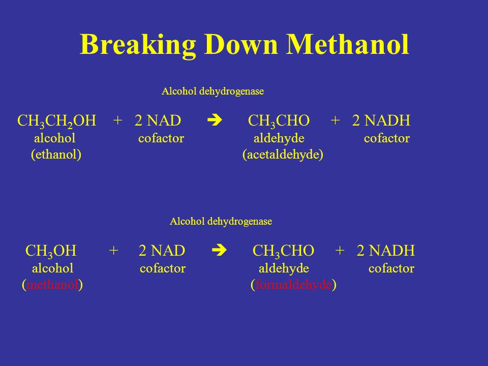 Breaking Down Methanol Alcohol dehydrogenase CH 3 OH + 2 NAD  CH 3 CHO + 2 NADH alcohol cofactor aldehyde cofactor (methanol) (formaldehyde) Alcohol dehydrogenase CH 3 CH 2 OH + 2 NAD  CH 3 CHO + 2 NADH alcohol cofactor aldehyde cofactor (ethanol) (acetaldehyde)