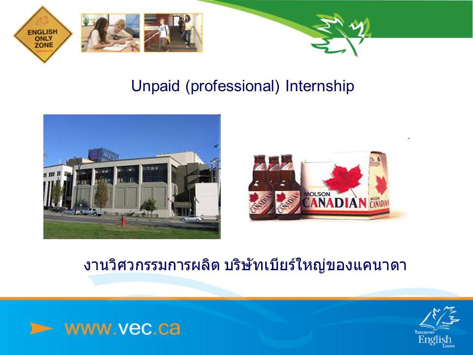 Unpaid (professional) Internship งานวิศวกรรมการผลิต บริษัทเบียร์ใหญ่ของแคนาดา