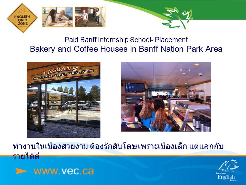 Paid Banff Internship School- Placement Bakery and Coffee Houses in Banff Nation Park Area ทำงานในเมืองสวยงาม ต้องรักสันโดษเพราะเมืองเล็ก แต่แลกกับ รายได้ดี