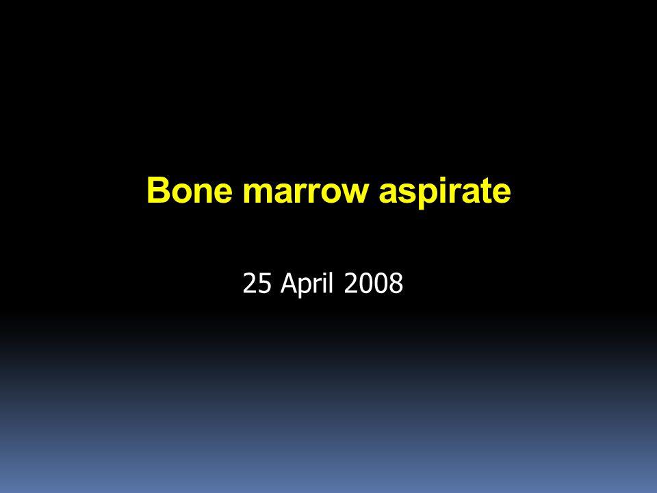 Bone marrow aspirate 25 April 2008