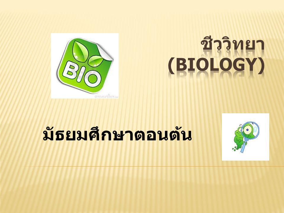  Biology = Bios ( สิ่งชีวิต ) + Logos ( การมีเหตุผลหรือความคิดหรือ วิทยาศาสตร์ )  ชีววิทยา (Biology) = การศึกษา ทางวิทยาศาสตร์เกี่ยวกับสิ่งมีชีวิต
