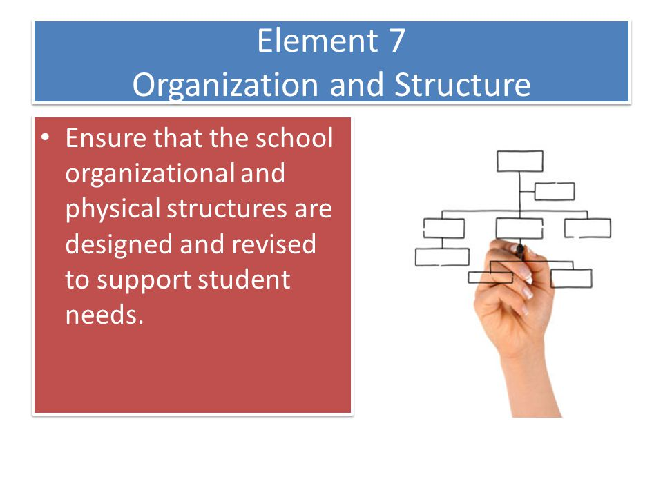 Element 7 Organization and Structure • Ensure that the school organizational and physical structures are designed and revised to support student needs.