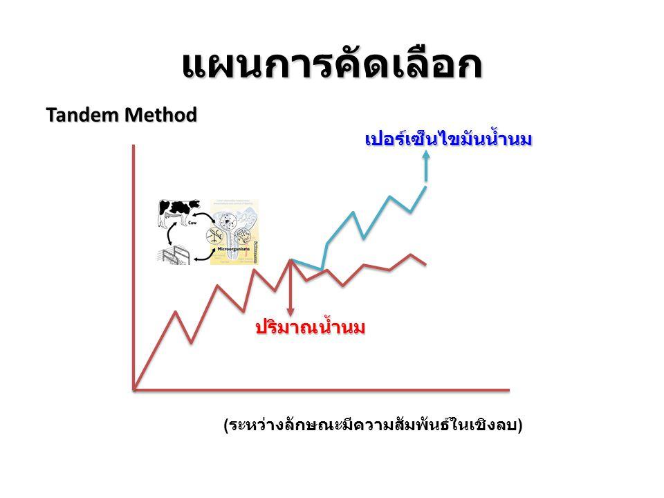 แผนการคัดเลือก Tandem Method ปริมาณน้ำนม เปอร์เซ็นไขมันน้ำนม ( ระหว่างลักษณะมีความสัมพันธ์ในเชิงลบ )