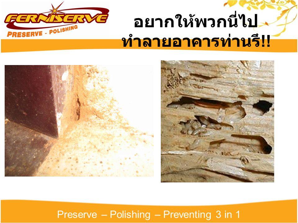 Preserve – Polishing – Preventing 3 in 1 อยากให้พวกนี่ไป ทำลายอาคารท่านรึ !!