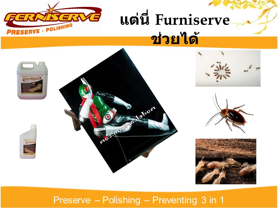 Preserve – Polishing – Preventing 3 in 1 แต่นี่ Furniserve ช่วยได้