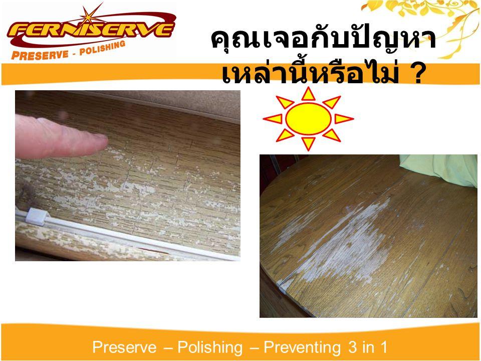 Preserve – Polishing – Preventing 3 in 1 Furniserve กับเฟอร์นิเจอร์ ภายใน