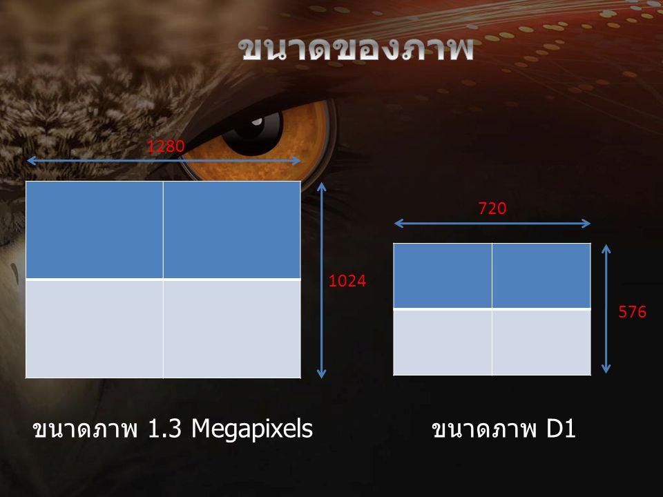1280 1024 720 576 ขนาดภาพ 1.3 Megapixelsขนาดภาพ D1
