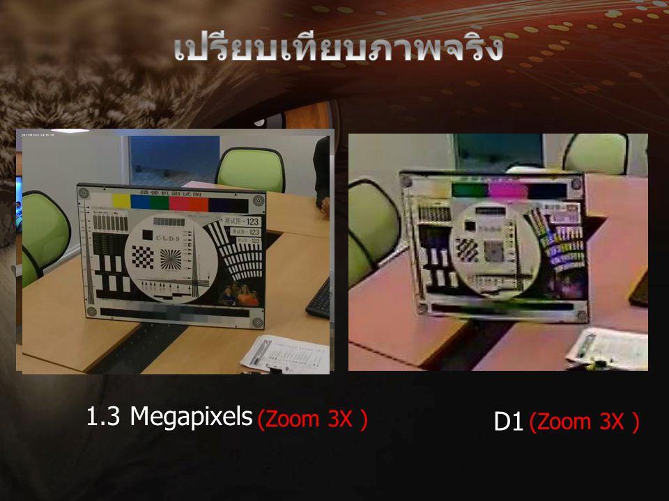 D1 1.3 Megapixels (Zoom 3X )