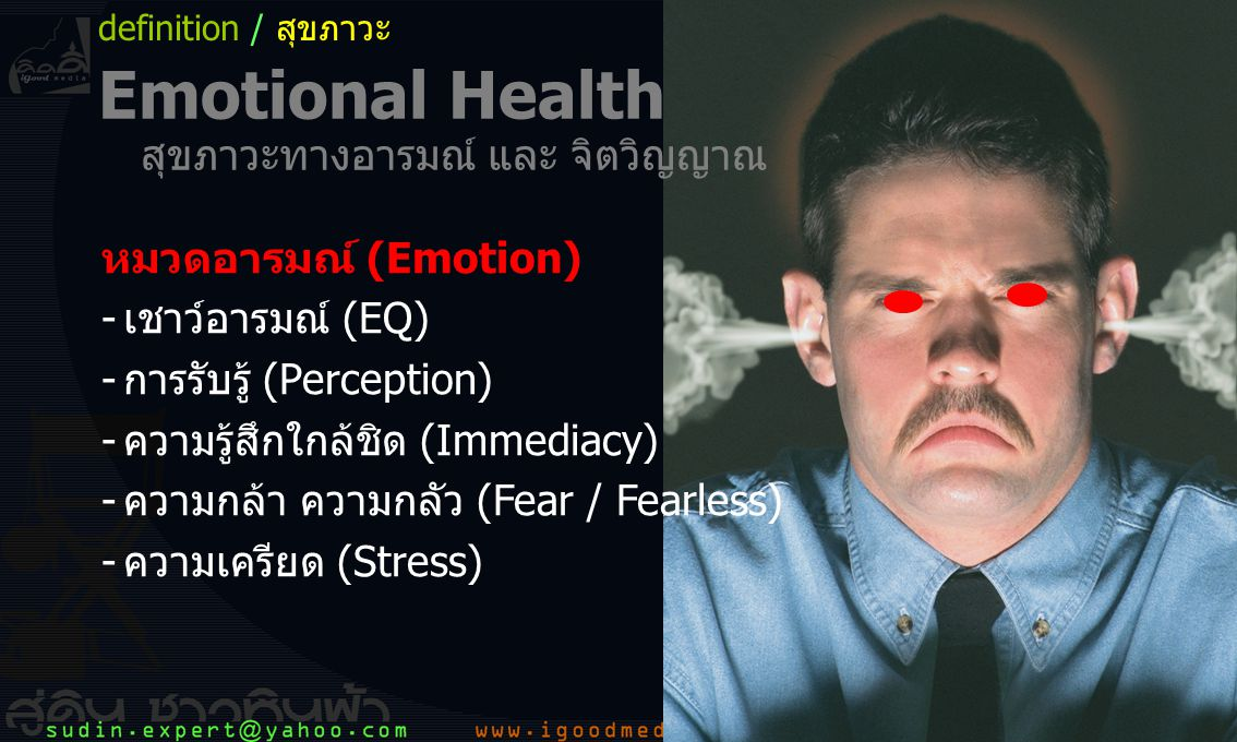 23 หมวดอารมณ์ (Emotion) -เชาว์อารมณ์ (EQ) -การรับรู้ (Perception) -ความรู้สึกใกล้ชิด (Immediacy) -ความกล้า ความกลัว (Fear / Fearless) -ความเครียด (Stress) definition / สุขภาวะ Emotional Health สุขภาวะทางอารมณ์ และ จิตวิญญาณ