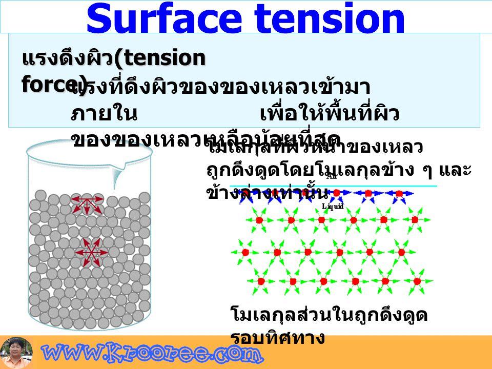 Surface tension โมเลกุลที่ผิวหน้าของเหลว ถูกดึงดูดโดยโมเลกุลข้าง ๆ และ ข้างล่างเท่านั้น โมเลกุลส่วนในถูกดึงดูด รอบทิศทาง แรงดึงผิว (tension force) แรง