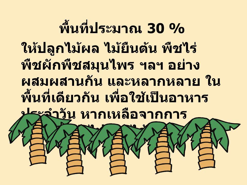 ปลูกผลไม้ ไม้ยืนต้น พืชไร่ พืชผัก
