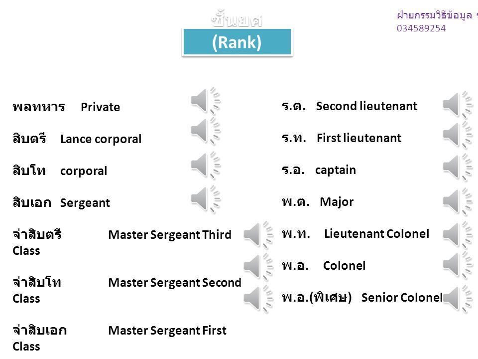 ชั้นยศ (Rank) ฝ่ายกรรมวิธีข้อมูล ร.29 034589254 พลทหาร Private สิบตรี Lance corporal สิบโท corporal สิบเอก Sergeant จ่าสิบตรี Master Sergeant Third Class จ่าสิบโท Master Sergeant Second Class จ่าสิบเอก Master Sergeant First Class ร.