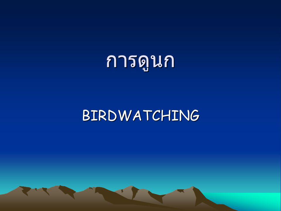 การดูนก BIRDWATCHING